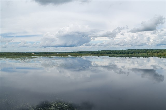 Detached at 6414 Concession 2 Rd, Ramara, Ontario. Image 6