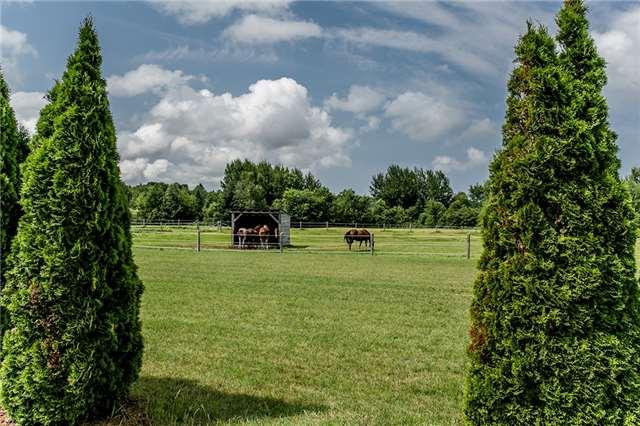 Farm at 1216 Wood Rd, Tay, Ontario. Image 3