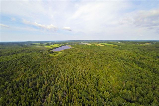 Farm at 1216 Wood Rd, Tay, Ontario. Image 6