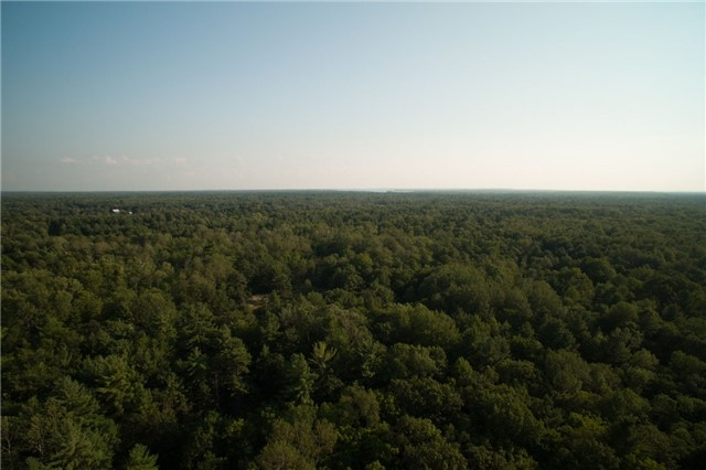 Vacant Land at 3184 Moynes Rd, Severn, Ontario. Image 4