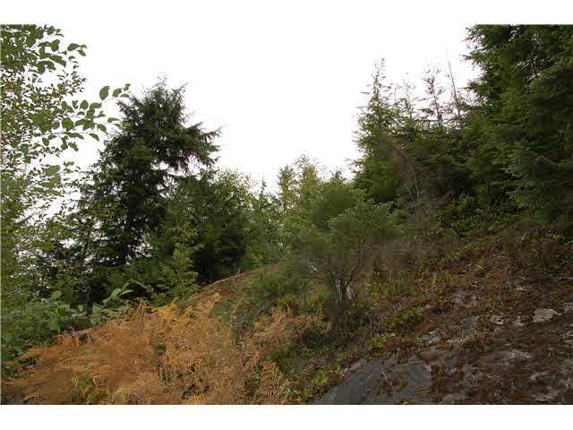 Vacant Land at LOT 5 COWAN POINT ROAD, Bowen Island, British Columbia. Image 4