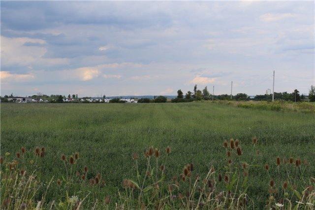 Vacant Land at 0 Innis Lake Rd, Caledon, Ontario. Image 6