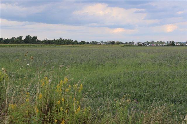 Vacant Land at 0 Innis Lake Rd, Caledon, Ontario. Image 8