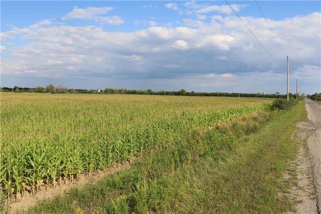 Vacant Land at 0 Innis Lake Rd, Caledon, Ontario. Image 11