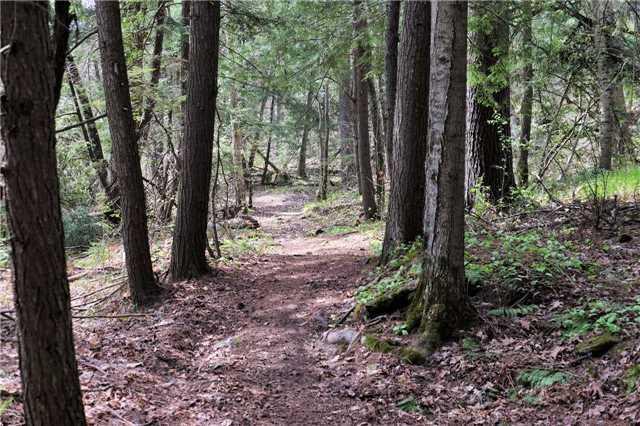 Detached at 12369 Sixth Line, Halton Hills, Ontario. Image 10