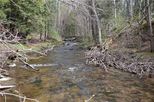 Detached at 12369 Sixth Line, Halton Hills, Ontario. Image 11