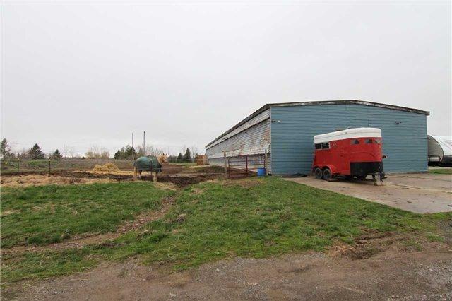 Farm at 4211 Cedar Springs Rd, Burlington, Ontario. Image 13
