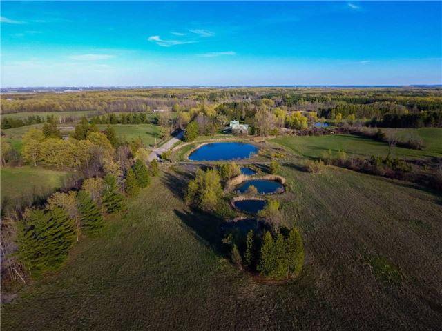 Vacant Land at 0 Shaws Creek Rd, Caledon, Ontario. Image 5