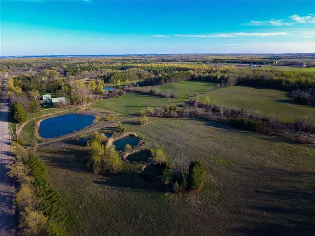 Vacant Land at 0 Shaws Creek Rd, Caledon, Ontario. Image 6