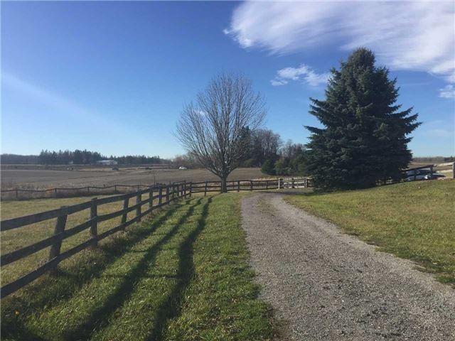 Rural Residence at 5137 King St E, Caledon, Ontario. Image 6