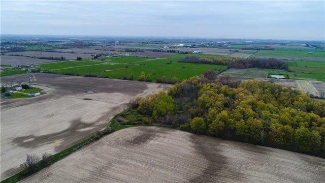 Vacant Land at 4085 King St, Caledon, Ontario. Image 13