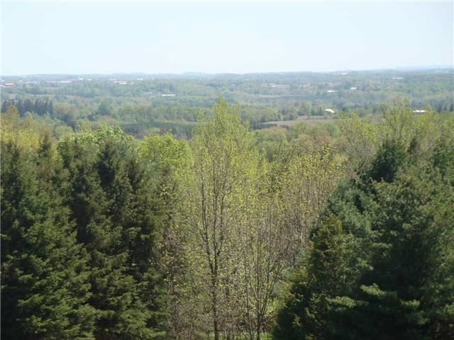 Detached at 16815 St. Andrew's Rd, Caledon, Ontario. Image 1
