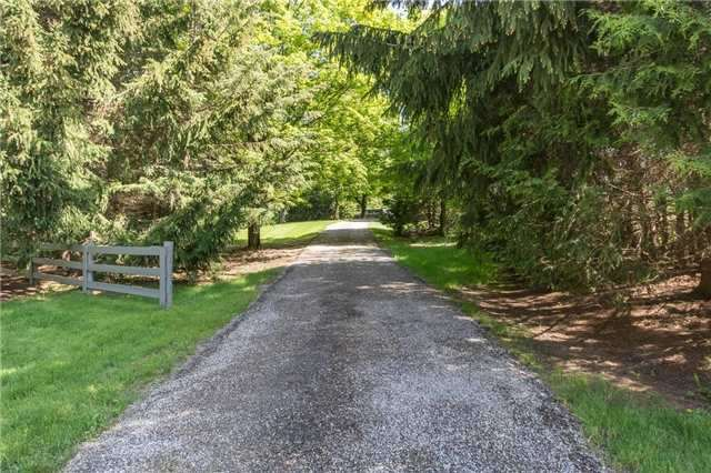 Detached at 16815 St. Andrew's Rd, Caledon, Ontario. Image 15