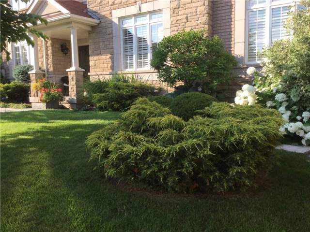 Detached at 5535 Doctor Peddle Cres, Mississauga, Ontario. Image 10