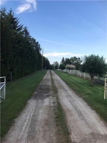 Detached at 14521 Bramalea Rd, Caledon, Ontario. Image 2