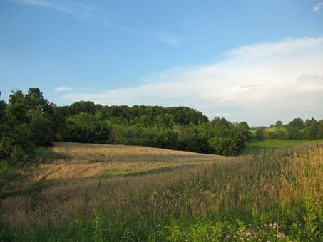 Vacant Land at 0 Mount Wolfe Rd, Caledon, Ontario. Image 2