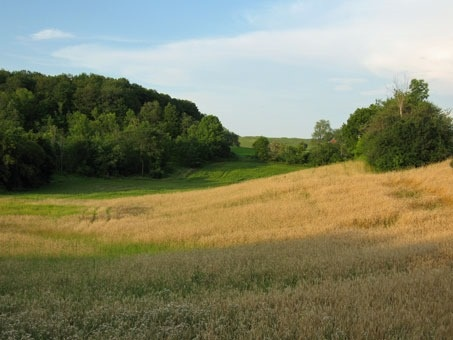 Vacant Land at 0 Mount Wolfe Rd, Caledon, Ontario. Image 3