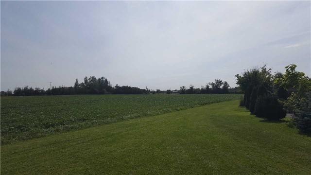 Detached at 6939 King St, Caledon, Ontario. Image 9