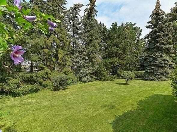 Detached at 25 Shady Lawn Crt, Mississauga, Ontario. Image 7