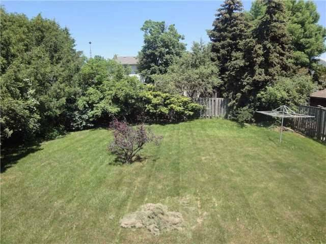 Detached at 374 Mcnabb Cres, Milton, Ontario. Image 6