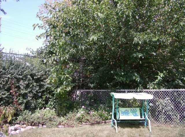 Detached at 416 Kingsleigh Crt, Milton, Ontario. Image 13