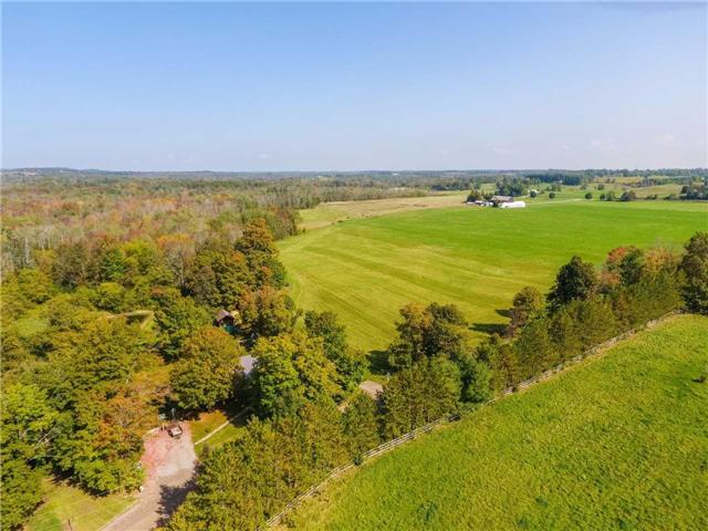 Detached at 16577 Mclaren Rd, Caledon, Ontario. Image 6
