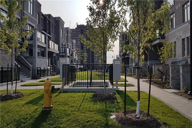 Condo Townhouse at 2335 Sheppard Ave W, Unit 6, Toronto, Ontario. Image 2