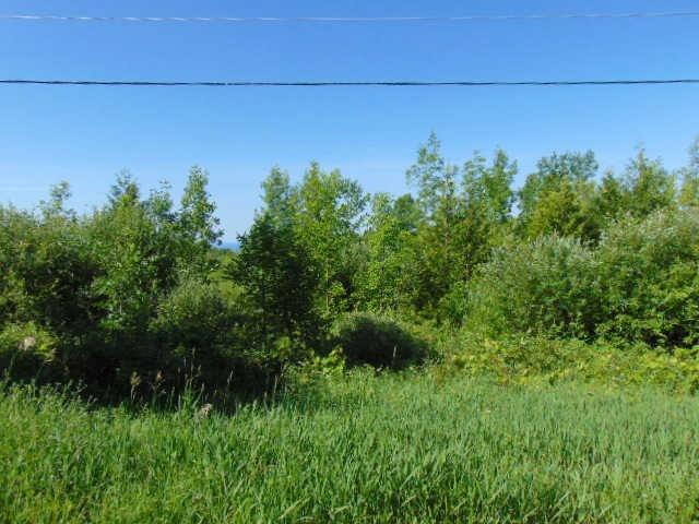 Vacant Land at N/A 15th Sideroad A, Blue Mountains, Ontario. Image 4