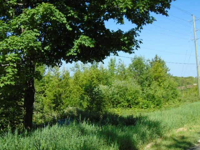Vacant Land at N/A 15th Sideroad A, Blue Mountains, Ontario. Image 5