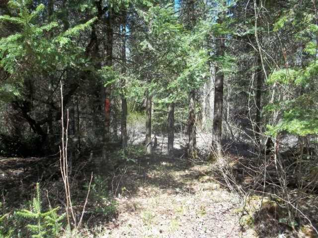 Vacant Land at Lot 30 Irondale Rd, Minden Hills, Ontario. Image 2