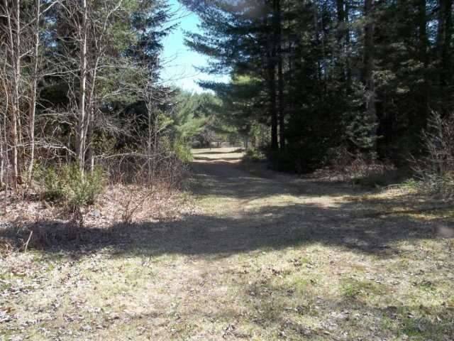 Vacant Land at Lot 30 Irondale Rd, Minden Hills, Ontario. Image 3