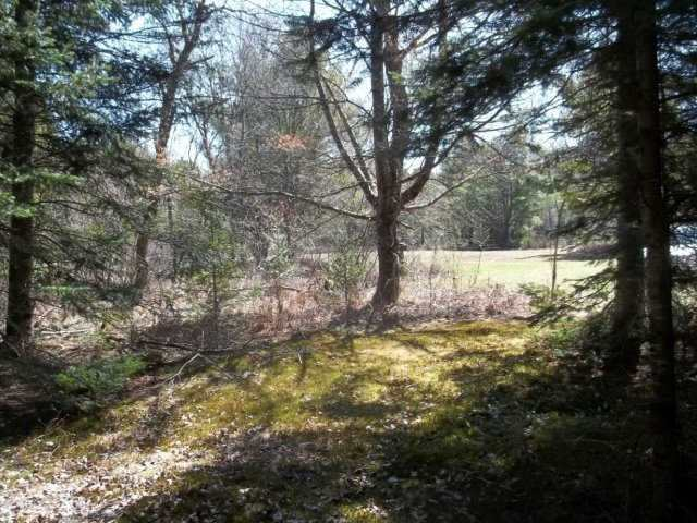 Vacant Land at Lot 30 Irondale Rd, Minden Hills, Ontario. Image 5