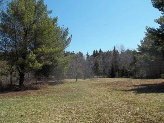 Vacant Land at Lot 30 Irondale Rd, Minden Hills, Ontario. Image 6