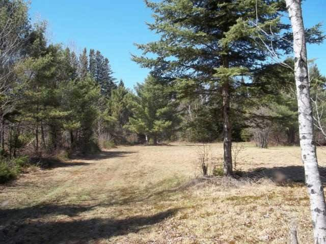 Vacant Land at Lot 30 Irondale Rd, Minden Hills, Ontario. Image 8