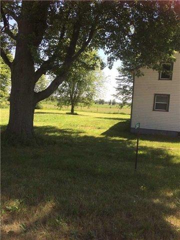 Farm at 244 Dickhout Rd, Haldimand, Ontario. Image 2