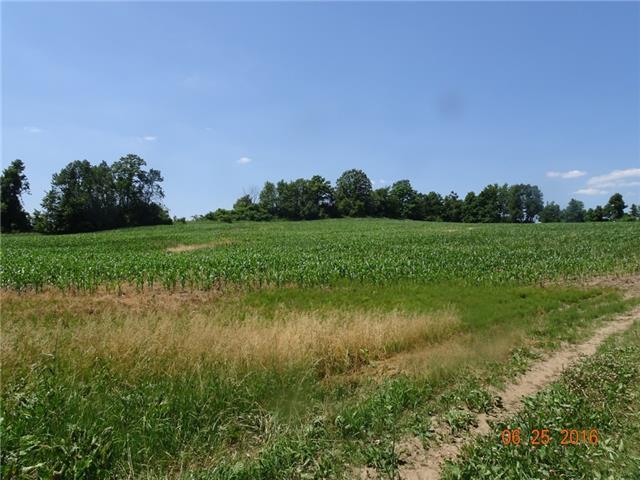 Farm at 1021 Concession 6th Rd, Hamilton, Ontario. Image 11