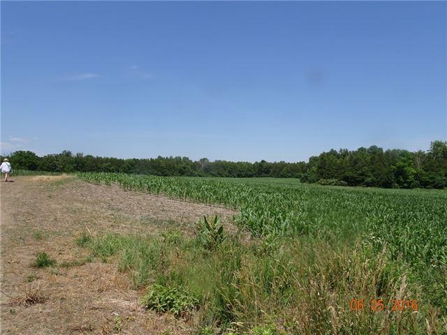 Farm at 1021 Concession 6th Rd, Hamilton, Ontario. Image 14