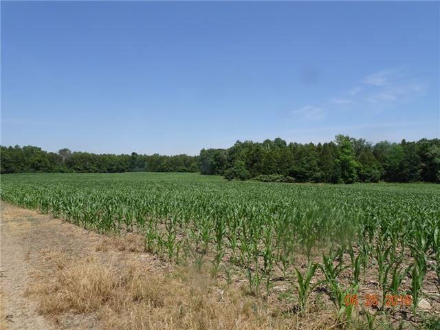 Farm at 1021 Concession 6th Rd, Hamilton, Ontario. Image 2