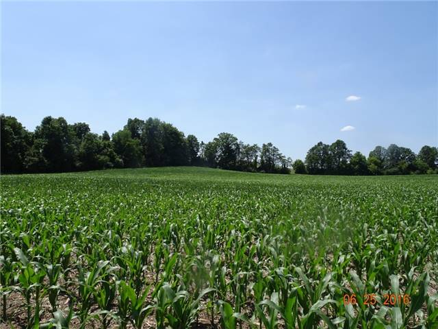 Farm at 1021 Concession 6th Rd, Hamilton, Ontario. Image 4