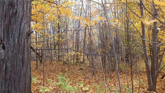 Vacant Land at 31 Moggy Pkwy S, Central Manitoulin, Ontario. Image 4