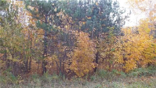 Vacant Land at 31 Moggy Pkwy S, Central Manitoulin, Ontario. Image 5
