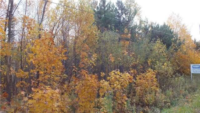 Vacant Land at 31 Moggy Pkwy S, Central Manitoulin, Ontario. Image 7