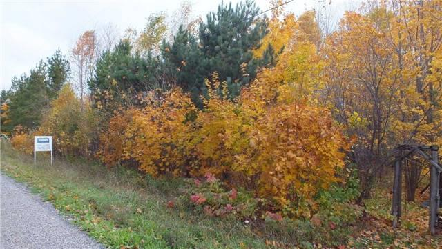 Vacant Land at 31 Moggy Pkwy S, Central Manitoulin, Ontario. Image 9