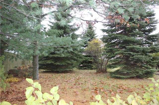 Vacant Land at 0 Cam St, Sudbury, Ontario. Image 1