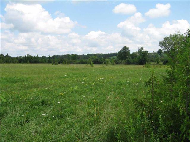 Vacant Land at 0 Farmstead Rd, Kawartha Lakes, Ontario. Image 9