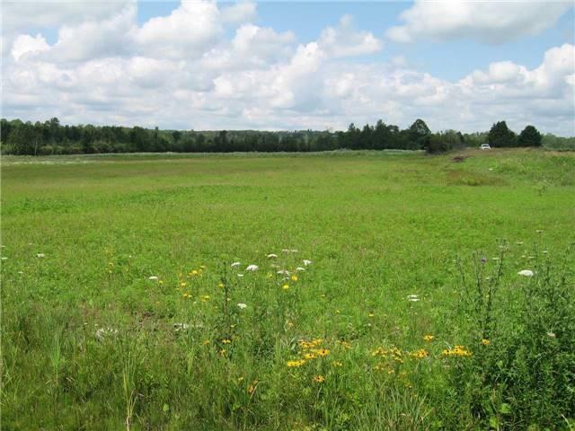 Vacant Land at 0 Farmstead Rd, Kawartha Lakes, Ontario. Image 11