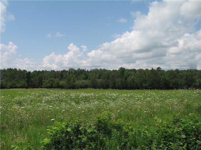 Vacant Land at 0 Farmstead Rd, Kawartha Lakes, Ontario. Image 2