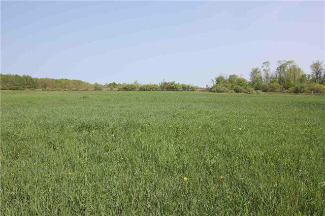 Vacant Land at 4803 Hwy 12, Ramara, Ontario. Image 2