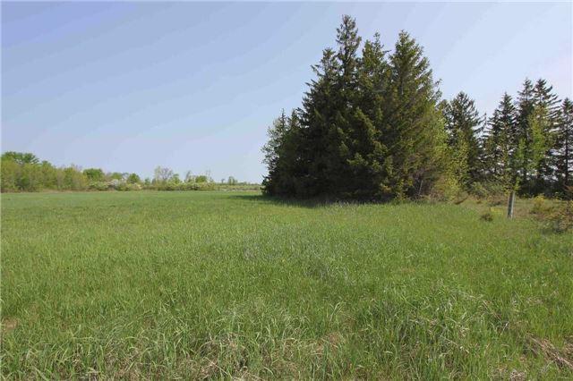 Vacant Land at 4803 Hwy 12, Ramara, Ontario. Image 3