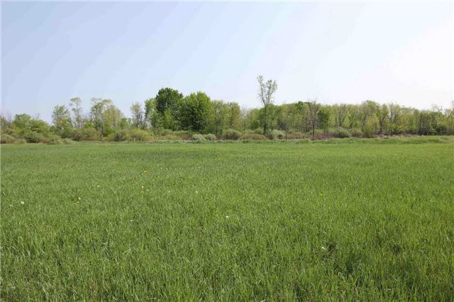 Vacant Land at 4803 Hwy 12, Ramara, Ontario. Image 4